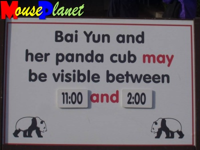 San Diego Zoo Baby Panda Exhibit: At the front entrance to the Zoo is a sign giving information about viewing times for the baby panda and mother. Photo by Lisa Perkis, copyright MousePlanet.