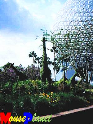 Animal Kingdom topiary, the new park was the theme of the Festival in 1998.