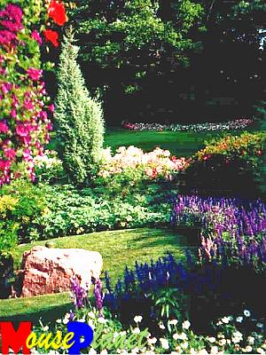 Victoria Garden, like Butchart Gardens, is a very traditional English garden with a mix of colors, heights, and textures.