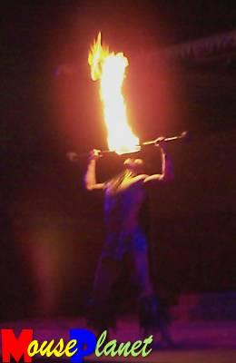 Disney world 12 jours de rêves en image Spirit_of_aloha_fire_dance_01_fendrick